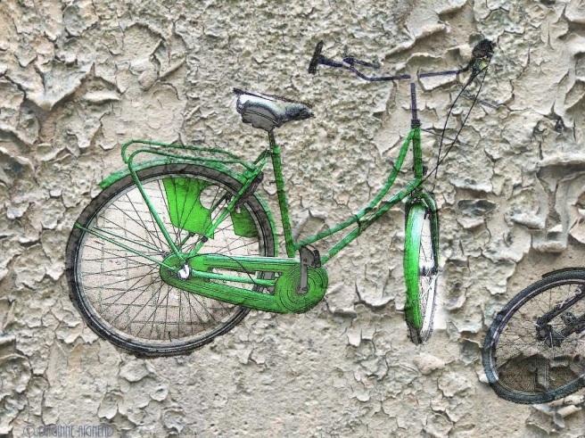 cycleoflife !
