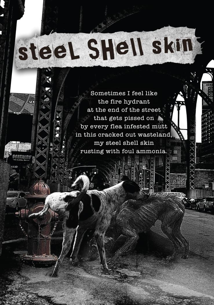 steel-shell-skin.jpg